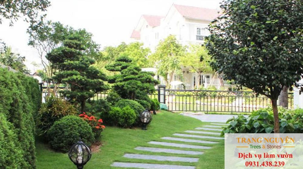 Cây cảnh sân vườn quận 5