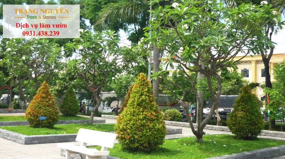 Chăm sóc cây cảnh Tại Tân Phú