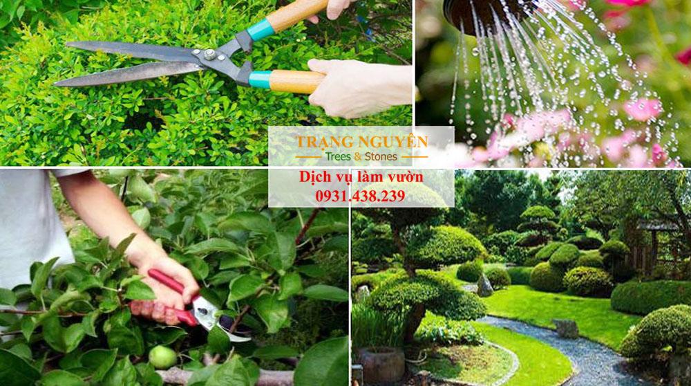 Chăm sóc cây cảnh sân vườn tại quận 1 tphcm
