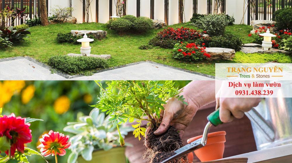 Chăm sóc cây cảnh sân vườn