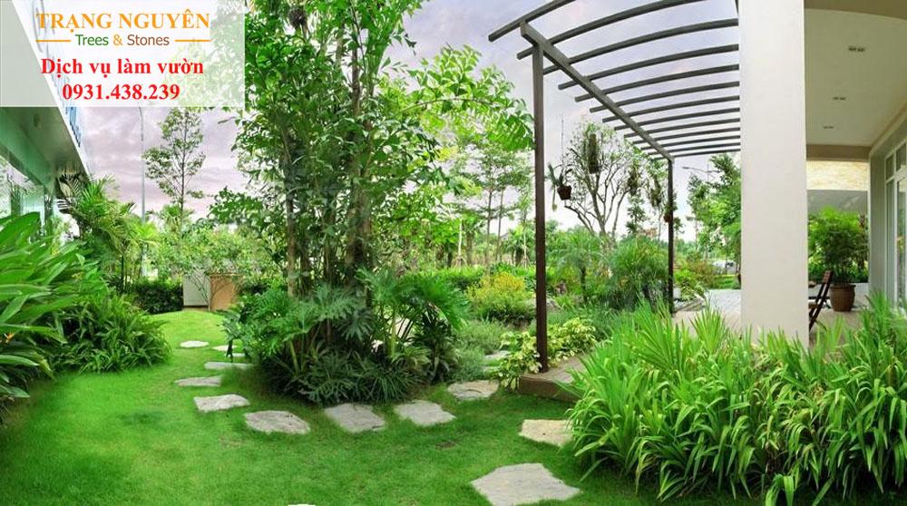 Chăm sóc cây cảnh tại Gò Vấp