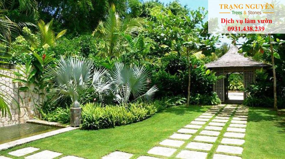 Chăm sóc sân vườn Gò Vấp