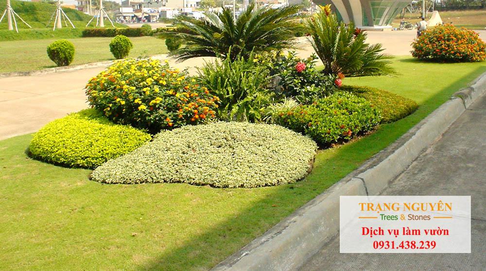 Chăm sóc sân vườn quận 2