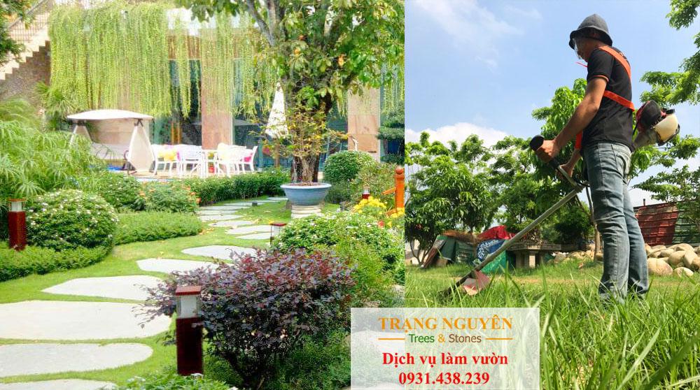 Chăm sóc cây cảnh sân vườn quận 3