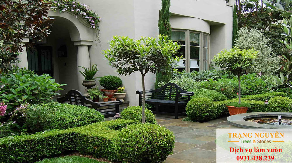 Chăm sóc sân vườn quận 5