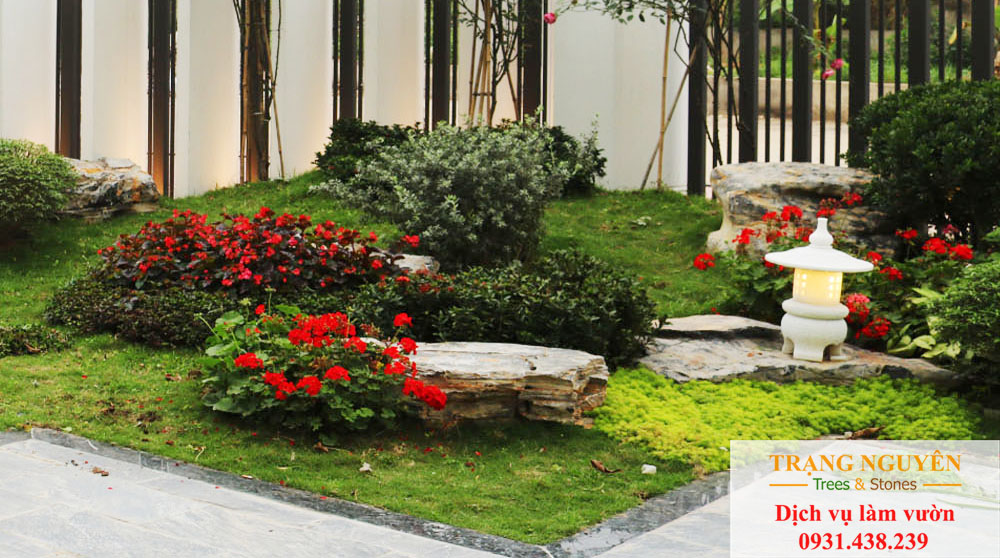 Chăm sóc sân vườn quận 8