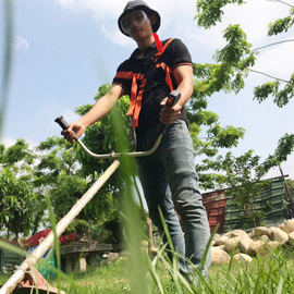 Kỹ sư cây cảnh